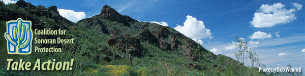 Coalition for Sonoran Desert Protection - Take Action!